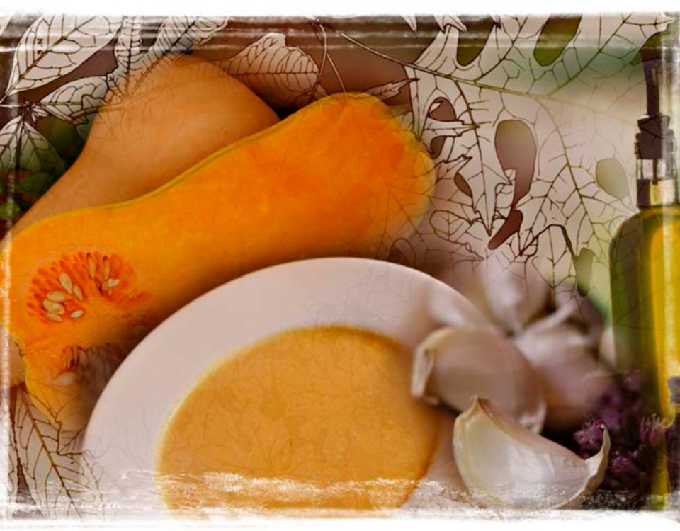 sandy hibbard creative squash soup recipe